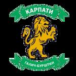 Карпати Галич