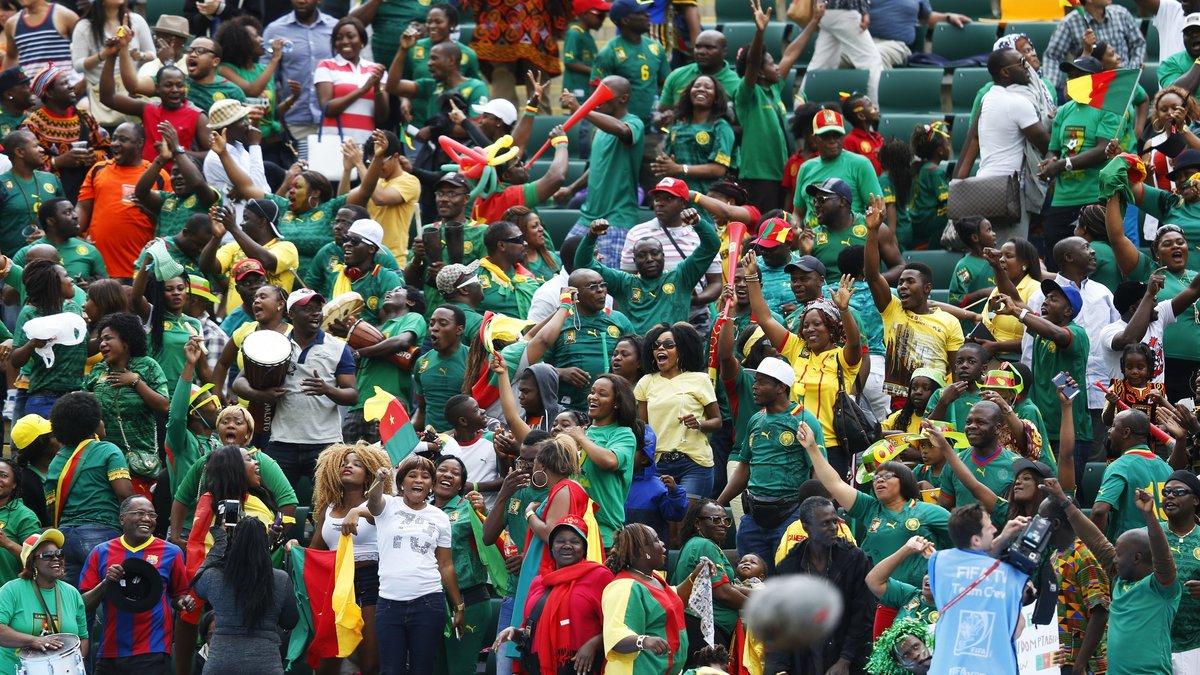Сборная Камеруна ищет наставника по объявлению