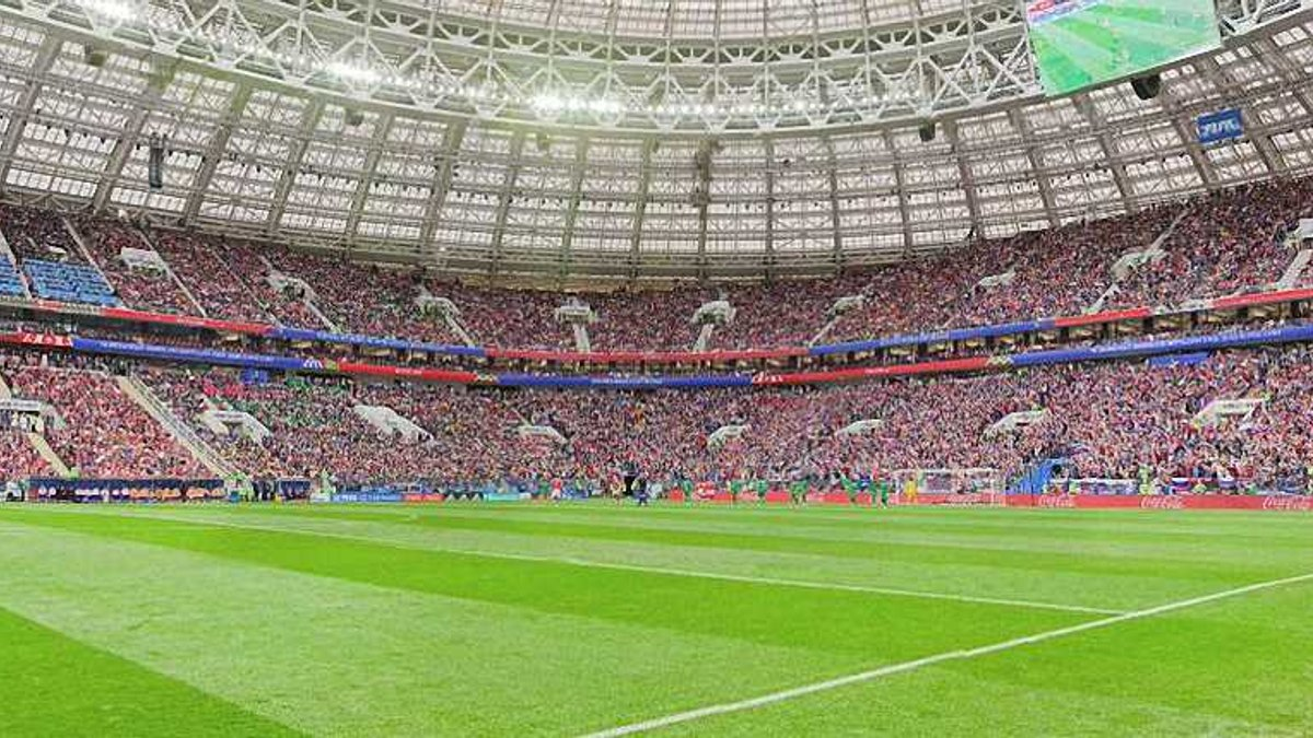 ЧМ-2018: украинский фанат получил наказание за появление на поле во время матча-открытия