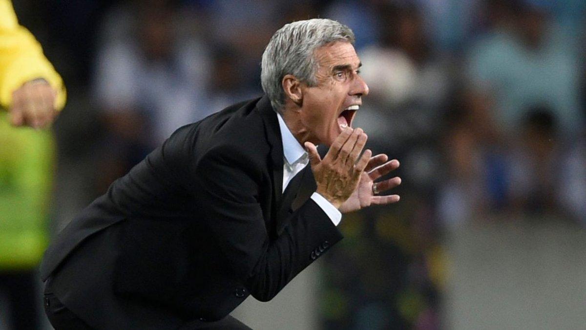 УЕФА дисквалифицировал Каштру на один еврокубковый матч