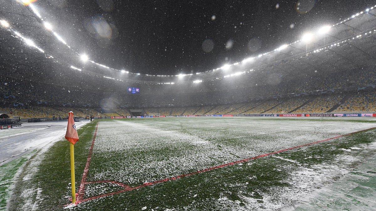 Динамо – Брюгге: агроном НСК Олимпийский оценил состояние газона перед матчем Лиги Европы