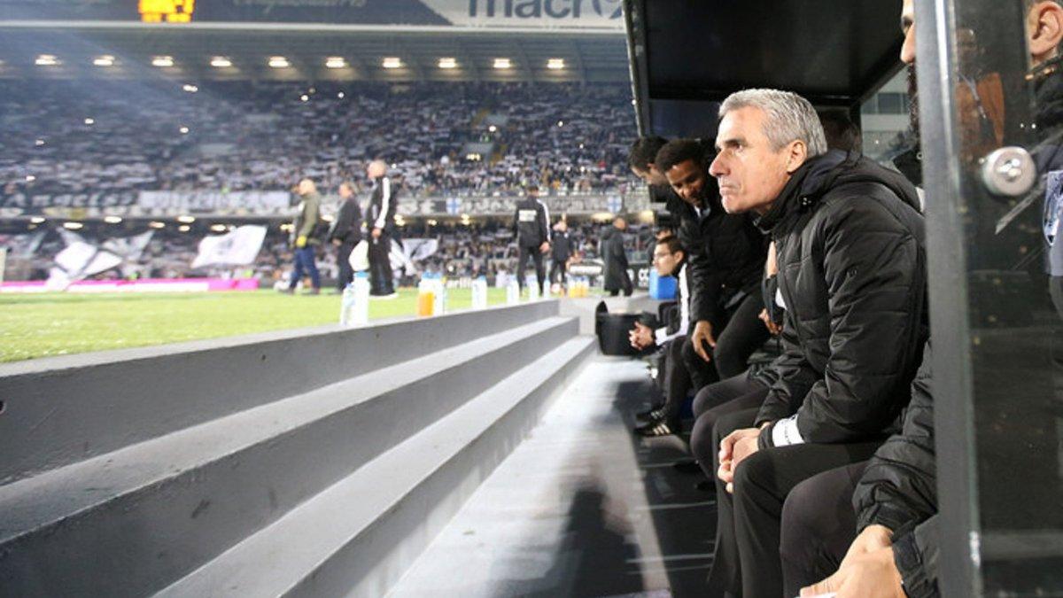 Шахтар – Маккабі Тель-Авів: Каштру звернувся до вболівальників перед матчем Ліги Європи
