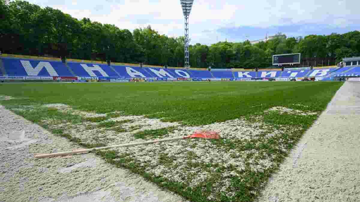 Динамо рассекретило сумму, которая ежегодно требуется на содержание нового газона стадиона имени Лобановского