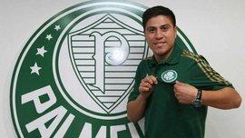 Официально: Кристальдо переехал в Бразилию. ФОТО