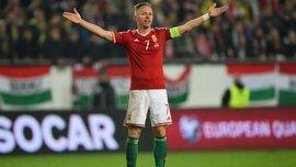 Безумная радость Венгрии после путевки на Евро-2016 (ВИДЕО)