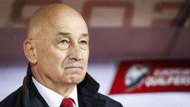 Муслин – фаворит на пост наставника сборной Боснии и Герцеговины
