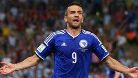 Ибишевич завершил карьеру в сборной Боснии и Герцеговины