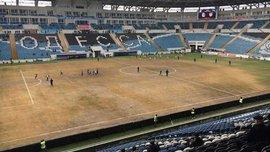 Дикий: Если ситуация с газоном в Одессе не изменится, УПЛ будет рекомендовать не проводить там матчи