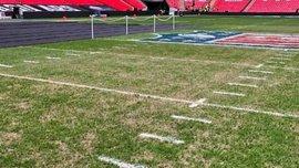 УЄФА перевірить стан газону на Уемблі перед матчем Ліги чемпіонів Тоттенхем – ПСВ