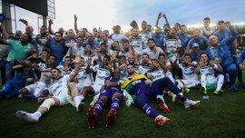 Палмейрас в десятый раз стал чемпионом Бразилии