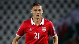 Матич назвал причины поражения сборной Сербии в матче с Португалией